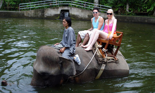 Elephant Ride in Bali