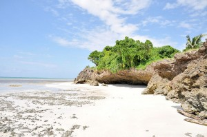 The secluded white sands of Diani Beach.
