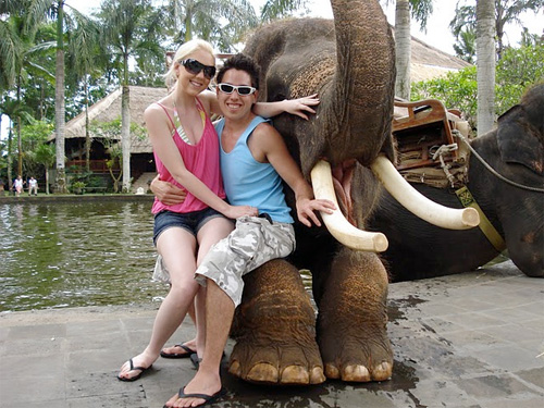 Elephant Park Bali 2007