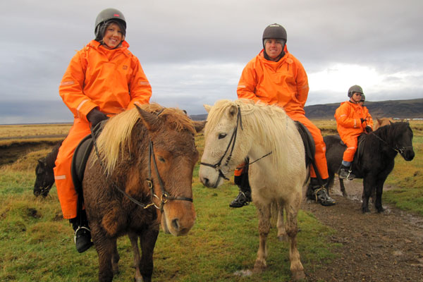 On our Icelandic Horses
