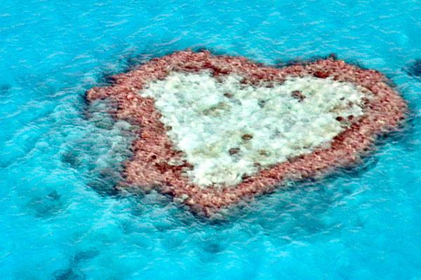 Heart Reef in the Great Barrier Reef