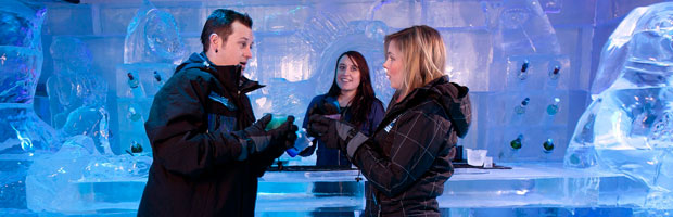 Is Melbourne's Ice Bar Worth The $30 Entry Fee?