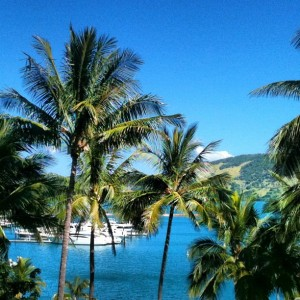Soon after arriving on Hamilton Island