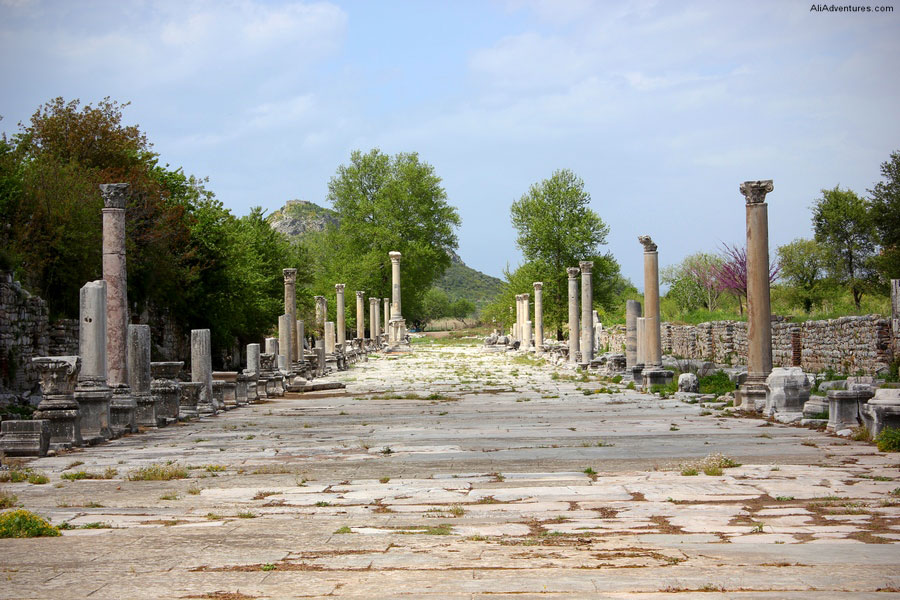 Harbor Road Ephesus