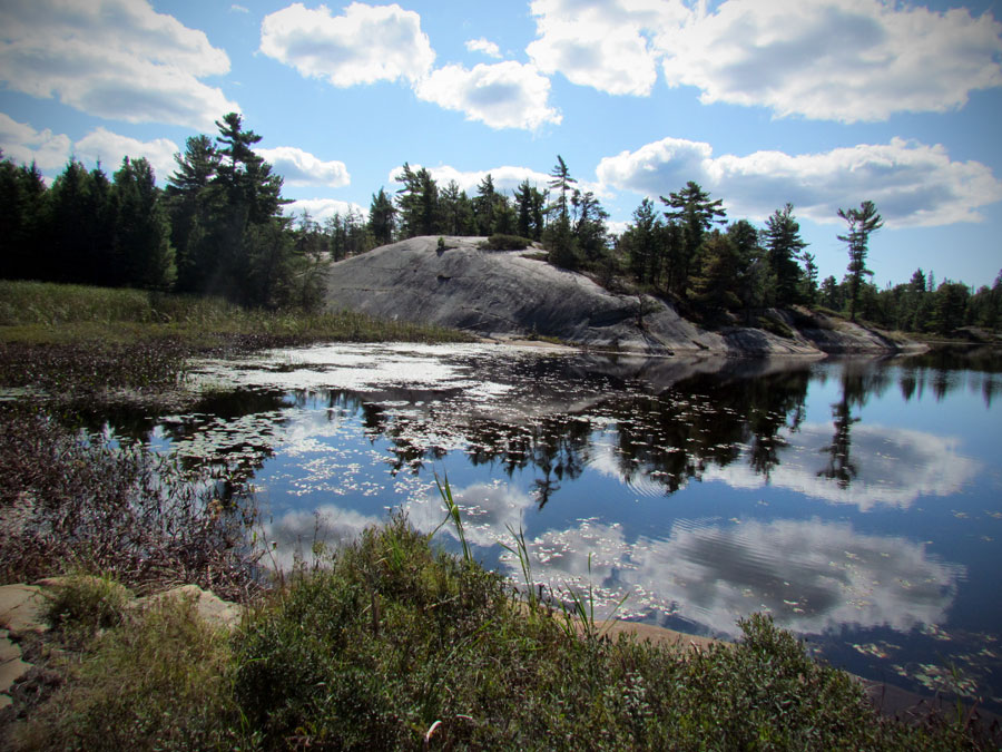 Taken in Grundy National Park, Ontario