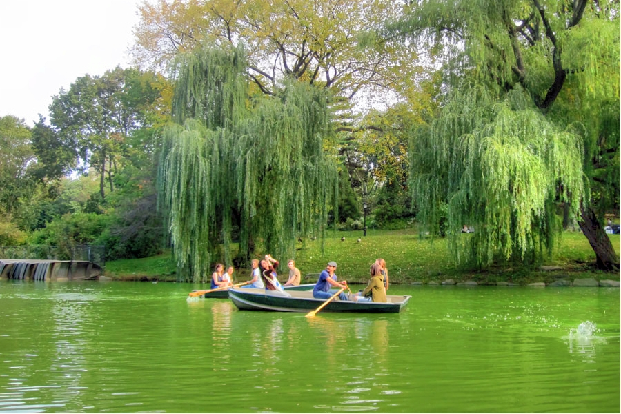 Green Lake Central Park NYC
