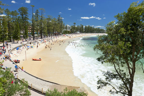 Manly Beach (Hamilton Lund; Destination NSW)