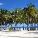 White sand and palm trees at Bohol Beach Club, Philippines